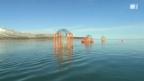 Video «Klimaeffekt auf Ozeanen: Tests mit gigantischen Reagenzgläsern» abspielen