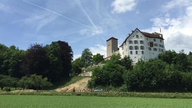 Konflikt Dauert An Ist Der Fels Zu Klein Für Schloss Wildenstein