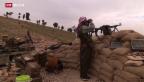 Video «Rückeroberung des Sinjar-Gebirges» abspielen