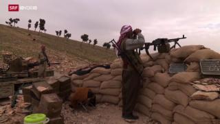 Video «Rückeroberung des Sinjar-Gebirge» abspielen