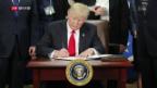 Video «Trump will die Mauer zu Mexiko bauen» abspielen