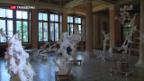 Video «Ausstellung im Kunstmuseum St. Gallen» abspielen