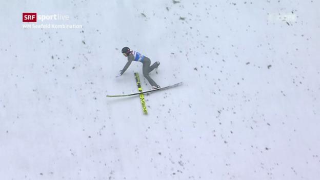 Video Ilves stürzt bei der Landung abspielen.