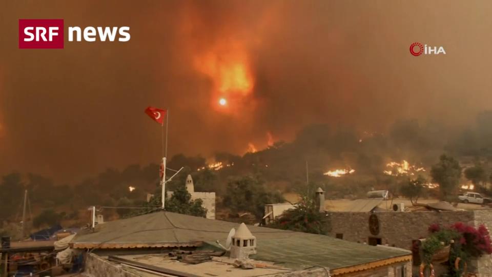 Archiv: Diese Länder sind von Waldbränden besonders betroffen