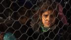 Video «Obergrenze für Flüchtlinge» abspielen