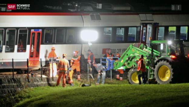 Video «Schweiz aktuell vom 14.11.2014» abspielen