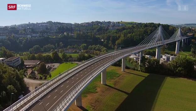 Video «Schweiz aktuell vom 10.10.2014» abspielen