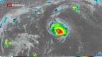 Video «Hurrikan «Florence» bedroht eine Million Menschen» abspielen
