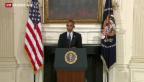 Video «US-Luftangriffe im Irak geplant» abspielen