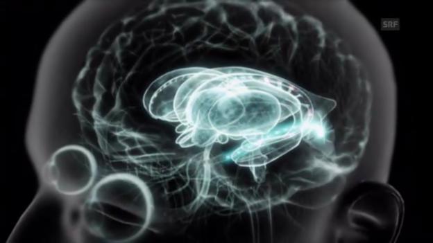 Video «Das automatische Gehirn» abspielen