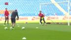 Video «Die Nati vor dem Spiel gegen Ungarn» abspielen