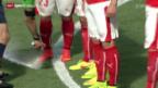 Video «Fussball: Der Einzug des Freistoss-Sprays» abspielen