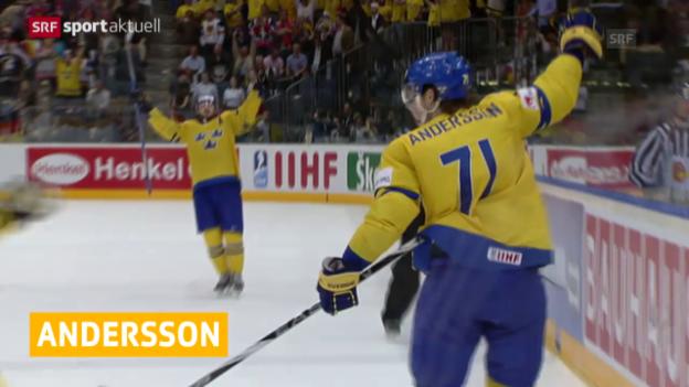Video «Eishockey: Neuer Ausländer für die Kloten Flyers («sportaktuell»)» abspielen