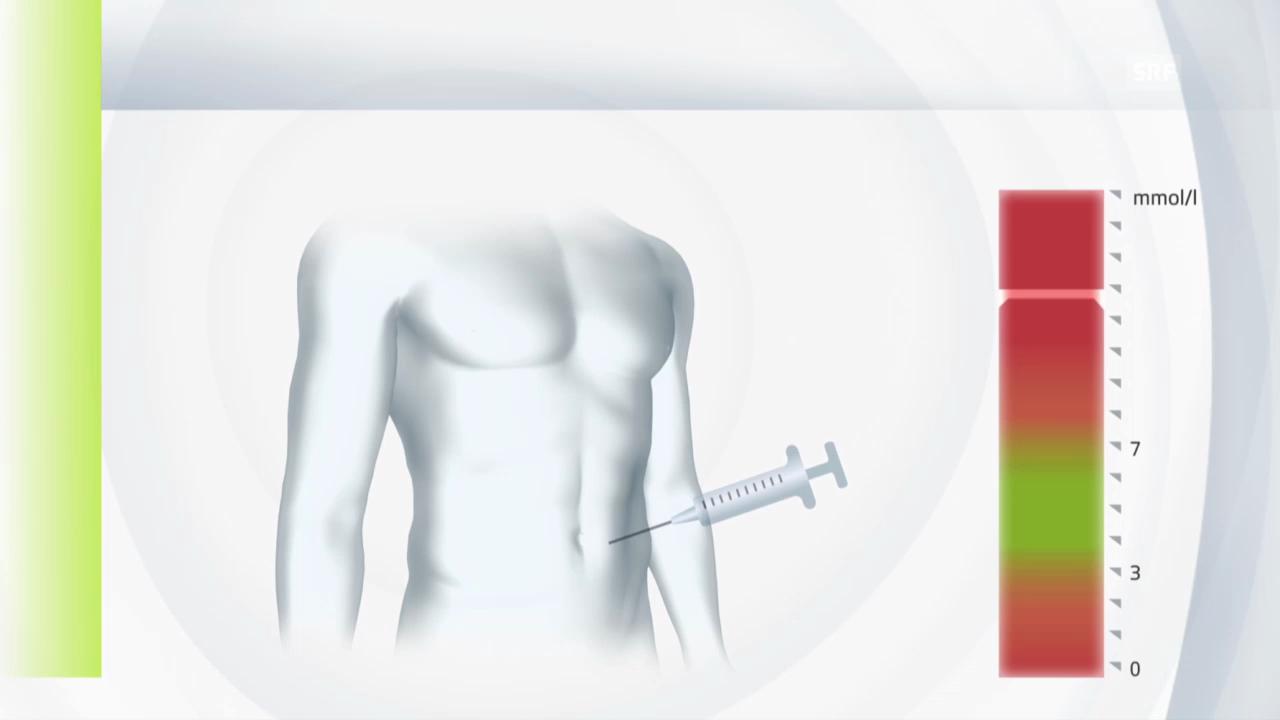 Die Rolle des Insulins im Körper