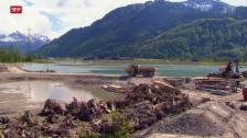 Link öffnet eine Lightbox. Video Das Wiedererwachen der Flüsse: Kampf dem Sumpf (2/3) abspielen