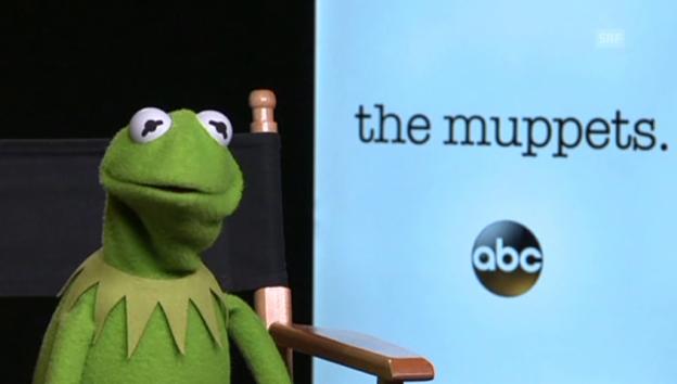 Video «Kermit über die Arbeit mit der Ex» abspielen