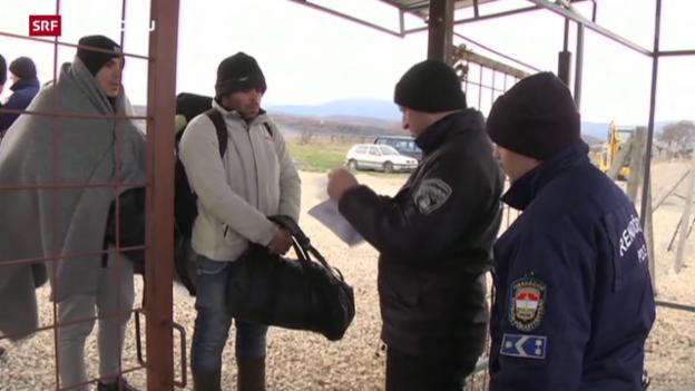 Video «Flüchtlings-Transporte direkt nach Deutschland» abspielen