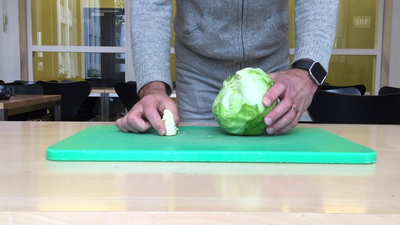 «Trick 77» Eisbergsalat entstorzen