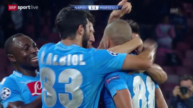 Video «Fussball: Gökhan Inlers herrliches Volley-Tor gegen Marseille» abspielen