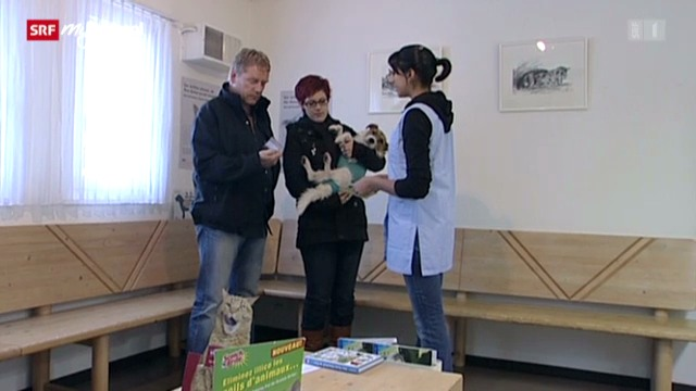 Berufsbild: Tiermedizinische Praxisassistentin EFZ