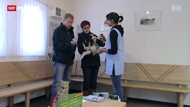 Tiermedizinische Praxisassistentin EFZ