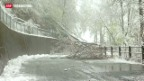 Video «Der Winter ist zurück» abspielen