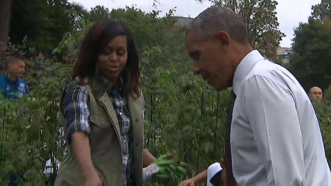 Obamas letzte Ernte
