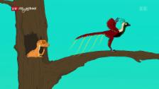 Link öffnet eine Lightbox. Video Ralph und die Dinosaurier: Xiaotingia (24/26) abspielen
