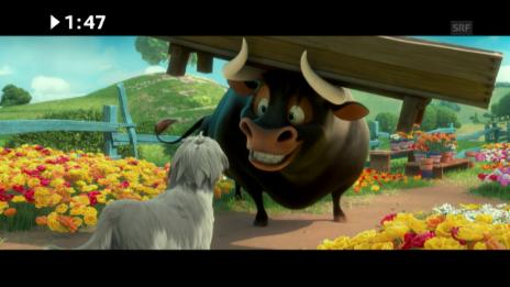 Link öffnet eine Lightbox. Video Kinostart: «Ferdinand» abspielen
