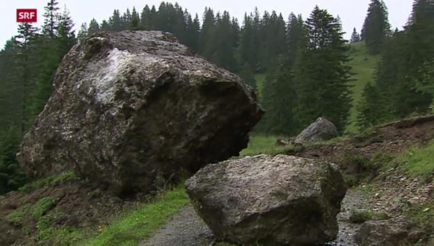 Video «Schweiz aktuell vom 30.07.2014» abspielen