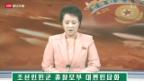 Video «Nordkorea provoziert weiter» abspielen