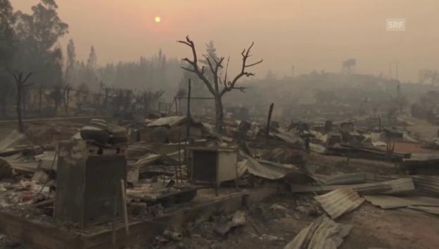 Video «Bilder aus der Stadt Santa Olga nach den Flammen» abspielen