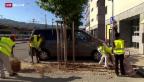 Video «FOKUS: Freiwillig Flüchtlinge aufnehmen» abspielen