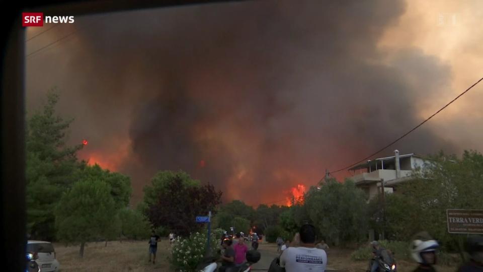 Brand in Athen zerstört 80 Häuser
