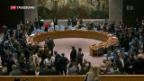 Video «Eskaliert jetzt der Syrien-Konflikt?» abspielen
