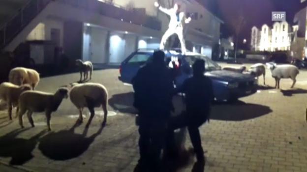 Video «DJ Bobo am Tatort-Set» abspielen