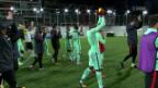 Video «Portugal siegt dank Cristiano Ronaldo» abspielen