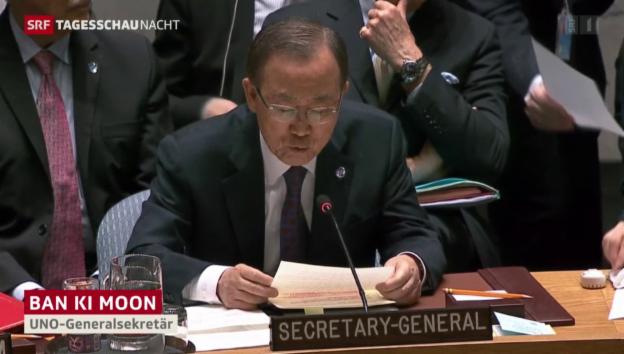 Video «UNO-Friedensplan für Syrien verabschiedet» abspielen