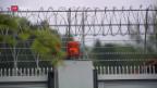Video «Westschweizer Häftlinge sitzen länger als Deutschschweizer» abspielen