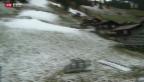 Video «Regen vermiest Start der Skisaison» abspielen