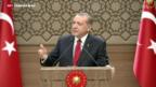 Video «Erdogan gewinnt absolute Mehrheit» abspielen