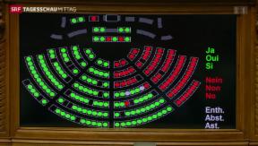 Video «Nationalrat hält an Pauschalbesteuerung fest» abspielen