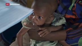 Video «Reportage aus Somalia» abspielen
