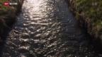 Video «Gewässerschutz bleibt wie er ist» abspielen
