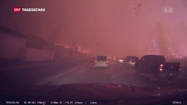 Video «Verheerende Waldbrände in Kanada» abspielen
