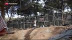 Video «Festnahme nach Brand in Flüchtlingslager auf Lesbos» abspielen