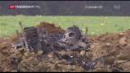 Video «F/A-18-Absturz wegen Pilotenfehler» abspielen
