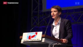 Video «AfD rutscht weiter nach rechts» abspielen