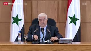 Video «Syriens Aussenminister beschuldigt Rebellen» abspielen