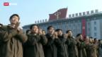 Video «Nordkorea droht den USA mit Atomschlag» abspielen